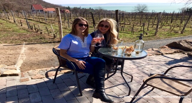 Hungary Wine tasting and castle tour around Lake Balaton